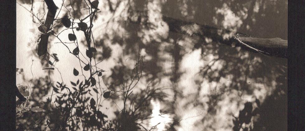 figments-11-by-gordon-undyjpg