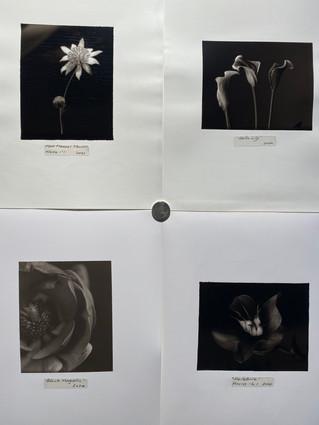 darkroom_37jpg