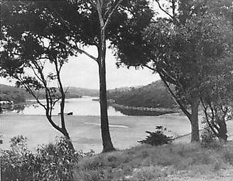 Willoughby Bay c 1910.jpg