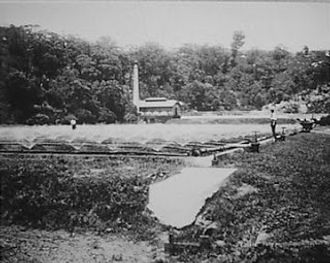 Outfall Works c 1910.jpg