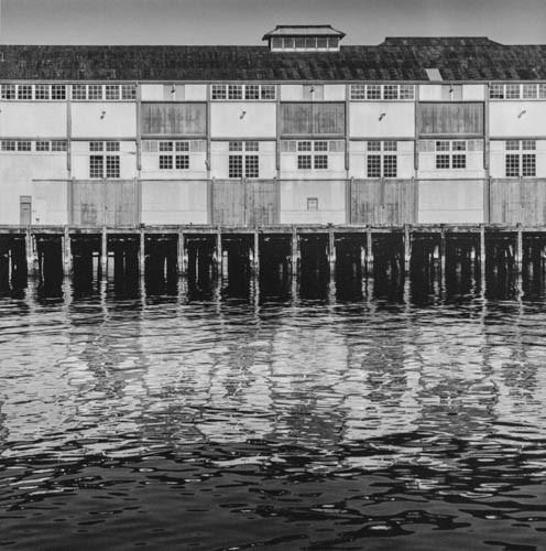 The old finger wharf.jpg