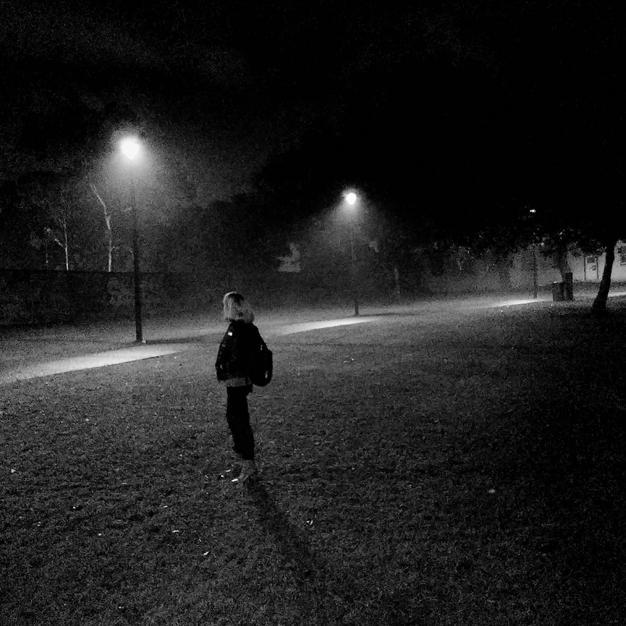 Peter_White_minx_in_mist