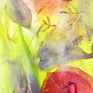 Pam Murphy Ice blossom no 5 $395.jpg
