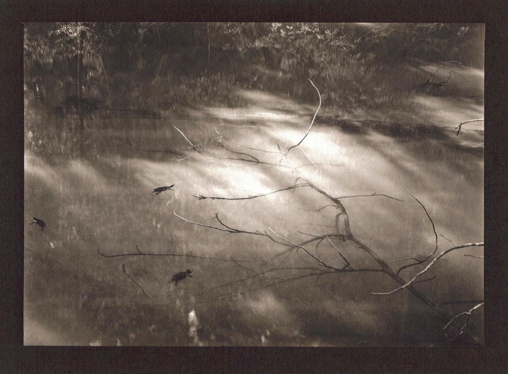 figments #7 by Gordon Undy