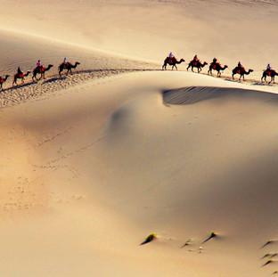 Barbara Bryan Camel train in Sandunes $400.jpg