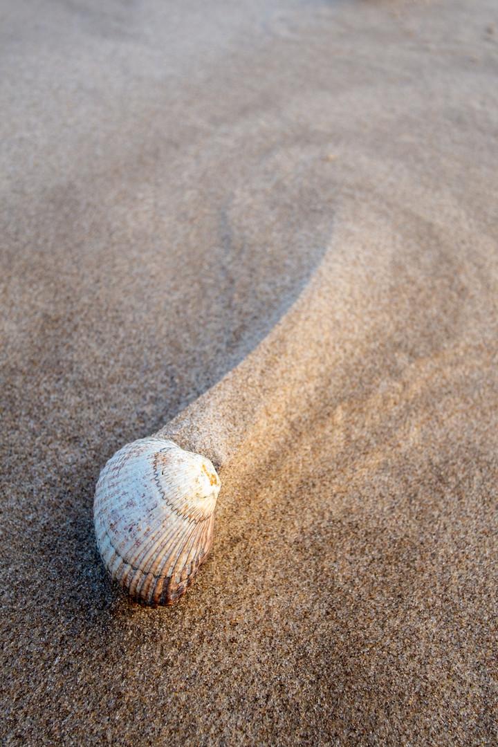 Beach 15