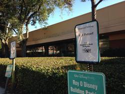 Roy O Disney Studios