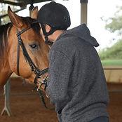 ללשונית אנגלית - סוסים 1.jpg
