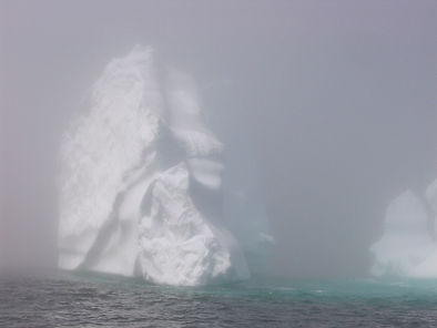 Iceberg looming in the fog, Quirpon Island, Newfoundland