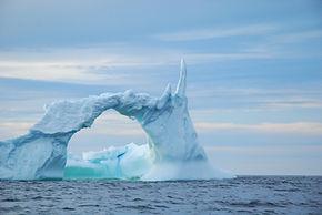 Iceberg near Quirpon Island.