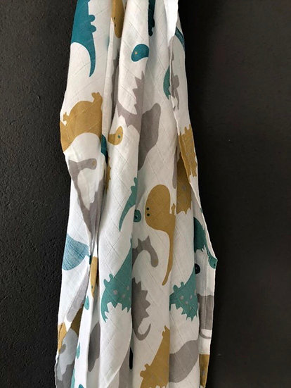 Clumsy Dino Print Blanket