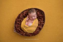фотосъемка новорожденных новосибирск