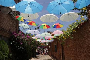 Festival de la Quinta, escenario de exhibición cultural y empresarial