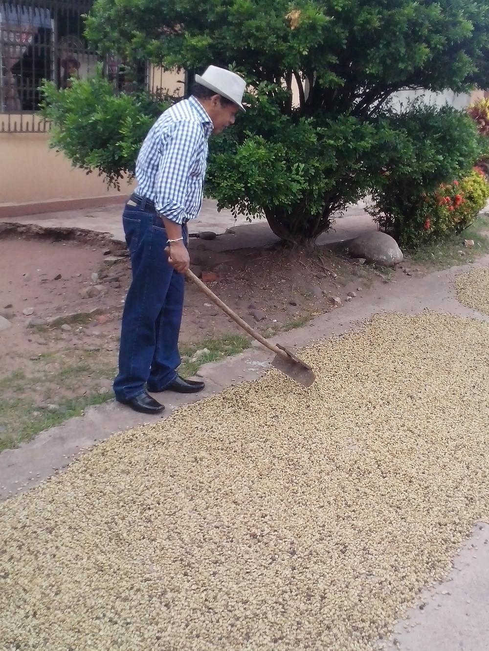 Rosendo Romero, secando café. Barrio El Cafetal en Villanueva, La Guajira. Foto: Mariaruth Mosquera.