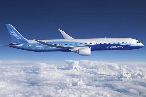 Quadro Boeing Dream