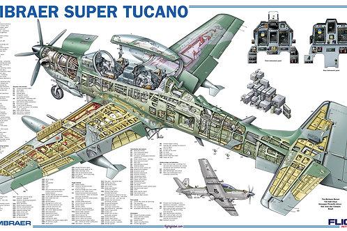Quadro Dados Tucano