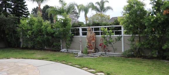 backyard-1.jpg