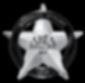 2019-QLD-ABIA-Award-Logo-WeddingStylist_