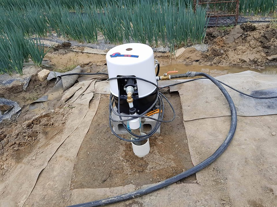 DoVE-Project_Dog-Rescue-Korea_water-pump-3