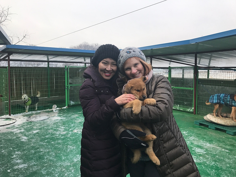 Hope-rescued-meat-dog-with-Claudia-Bright-and-Tami-Zussman