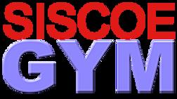 BlueSG Logo.png