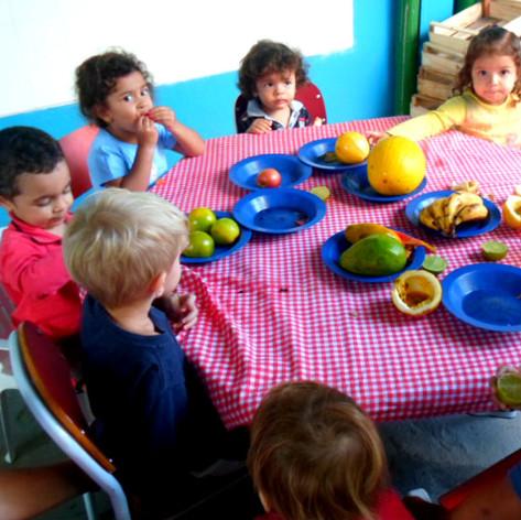 Experimentando as frutas