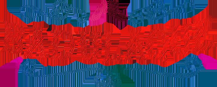 Duo Badulaque logo