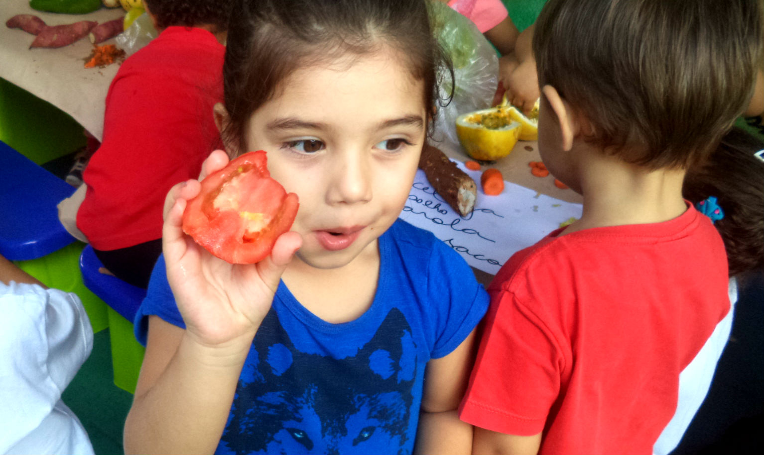 Experimentando Tomate