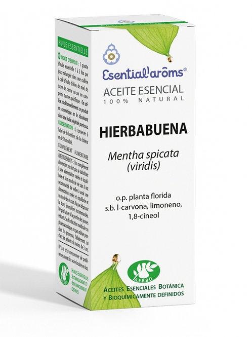 ACEITE ESENCIAL AEBBD - Hierbabuena