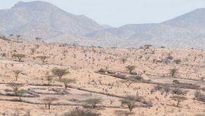 Kenya-Acqua a Leirr-Samburu District