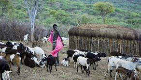 Kenya LAND OF HOPE