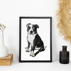 black and white A4 dog portrait.jpg