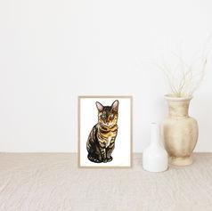 Blue-eyed Cat Portrait