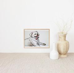 White Dog Watercolour Portrait