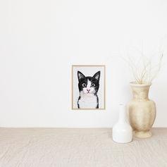 Black and White Kitty Portrait