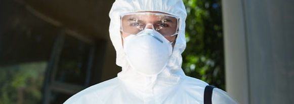 protection contre insecticides punaises