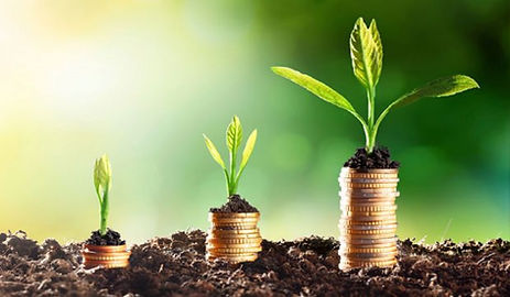 coins-growing-in-soil-economic-growth.jpg