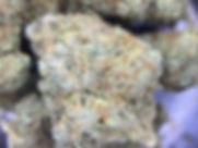gorilla glue 4.jpg