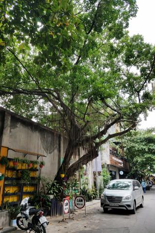 20171019-52_Hanoi-8.jpg