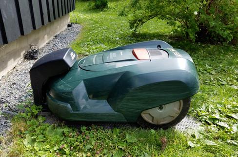The robot lawn mower that kept startling us