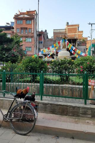 20170928-44_Kathmandu-38.jpg