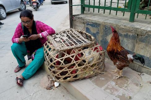 20170928-44_Kathmandu-41.jpg