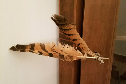 Two owl feathers given to us by Andrea at the cowboy restaurant in Cortona