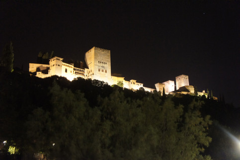 The Alhambra from below