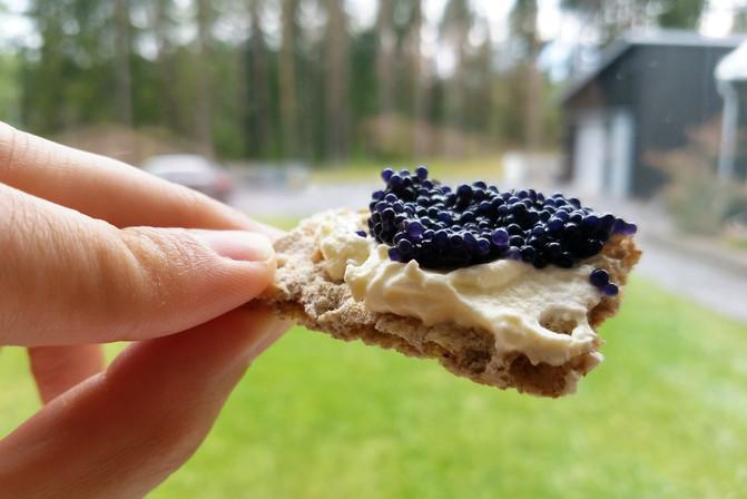 Caviar + creme fraiche + Wasa cracker