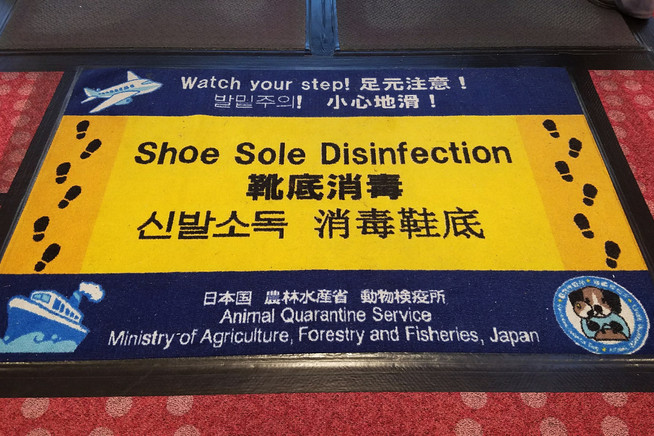 We walked on this mat to disinfect our shoe soles before entering Japan.