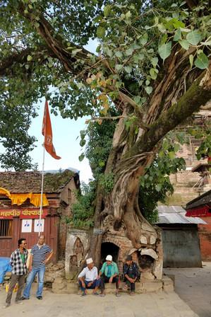 20170928-44_Kathmandu-23.jpg