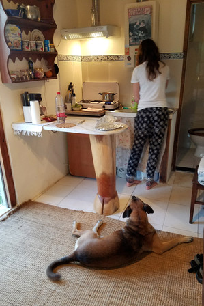 Making spaghetti with help from one of the dogs. There were no restaurants or shops within walking distance, so we cooked a lot while we were here.