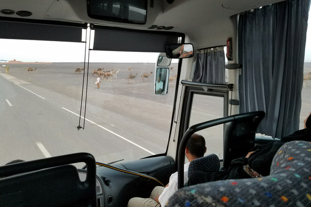 The overnight bus ride to Merzouga