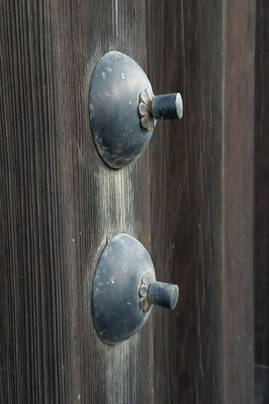 Brandon went up and touched these things on the door, and a loud alarm started ringing all around the entire palace.